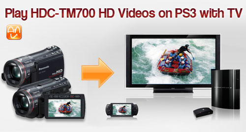 HDC-TM700 on PS3 with HDTV