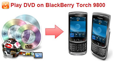 Play-dvd Disc Blackberry Torch 9800