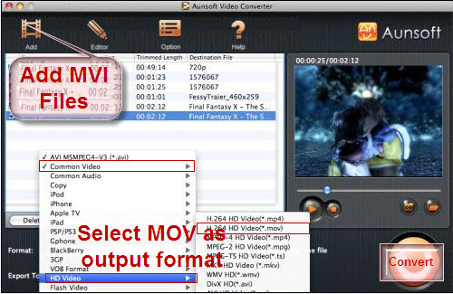 convert mvi to quicktime mov