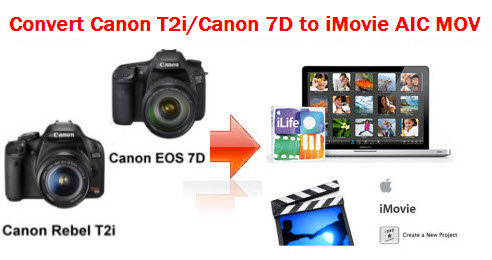 canon t2i photos. Canon T2i and Canon 7D both